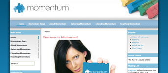 Momentum: Corporate Volenteers Website